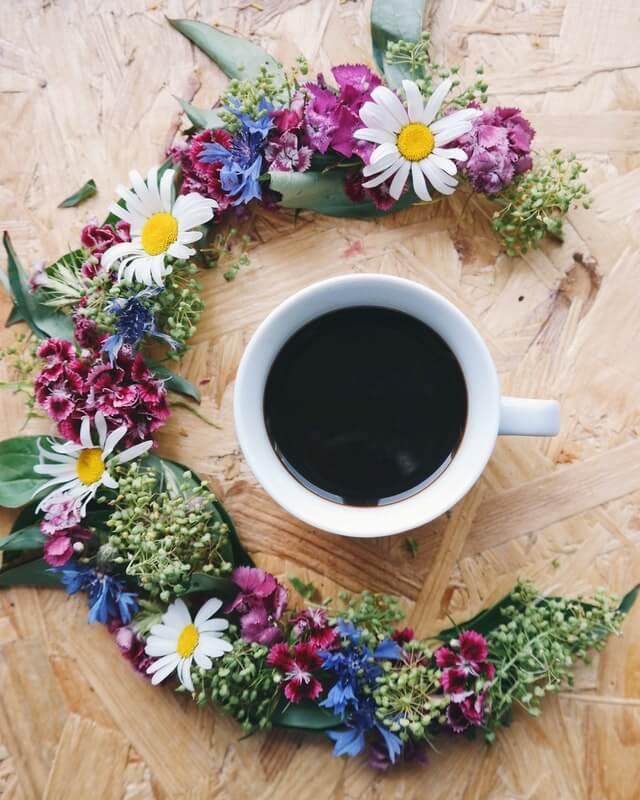 Schwarzer Kaffee zum Düngen