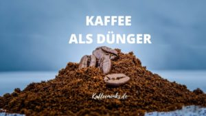 Read more about the article KAFFEE ALS DÜNGER